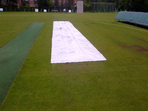 SEMI TRANSLUCENT FLAT SHEET CRICKET COVERS Banner